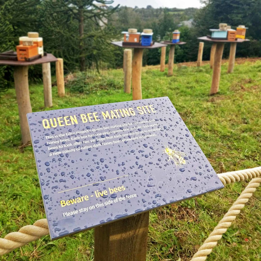Eden Project pollination trail signage