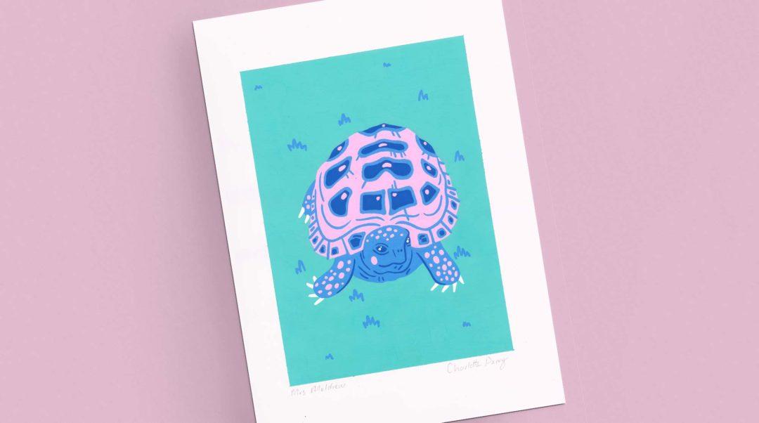 Pet portrait - Mrs Meldrew the tortoise